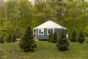 Tuckaway Tree Farm View of Yurt